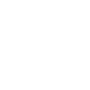 Meet the Placements